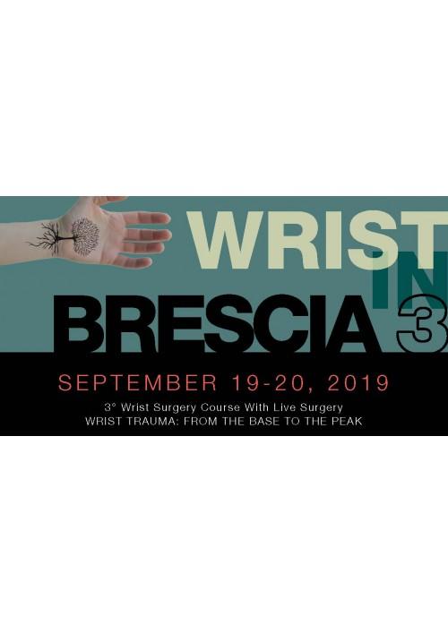 Wrist in Brescia 3