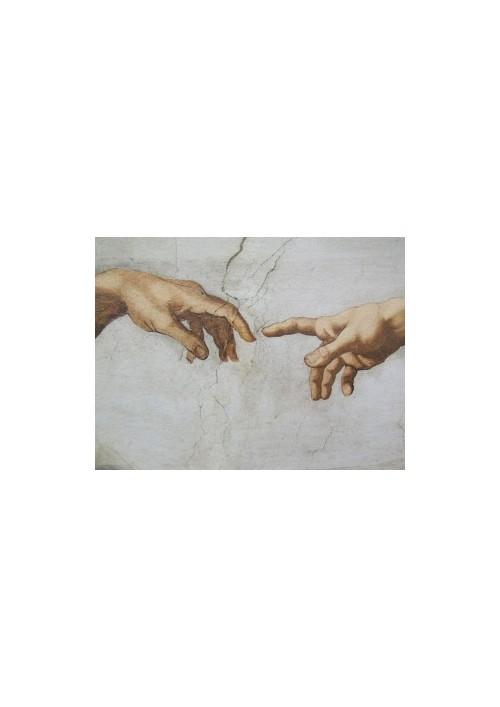 La mano: sintesi evolutiva di pensiero e azione
